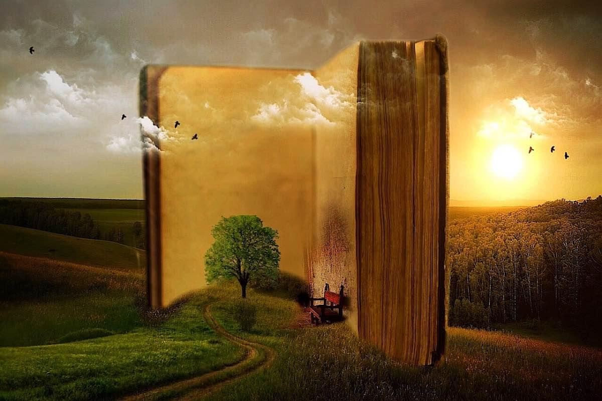 Livro em branco em floresta imaginária